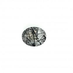 Black Rotile 5.04 Ct Best Quality