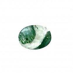 Tree Agate 5.57 Ct Best Quality
