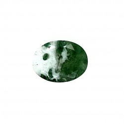 Tree Agate 6.27 Ct Good Quality