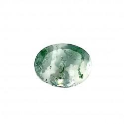 Tree Agate 7.47 Ct Gem Quality