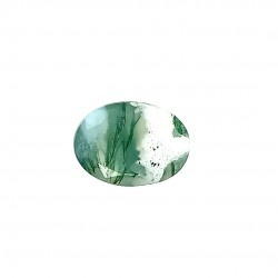 Tree Agate 6.69 Ct Lab Tested