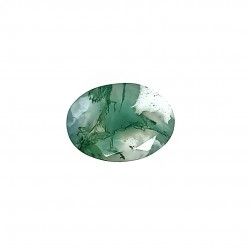 Tree Agate 6.68 Ct Best Quality